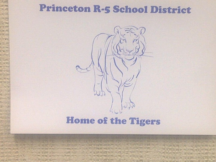Concerns Raised Regarding Princeton Elementary Principal