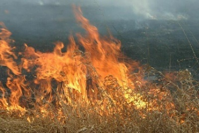 Grass Fires Due to Dry Conditions