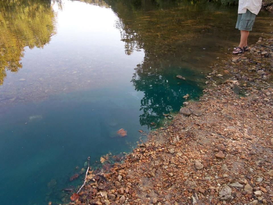 High Number of Toxins Found in Missouri's Waterways