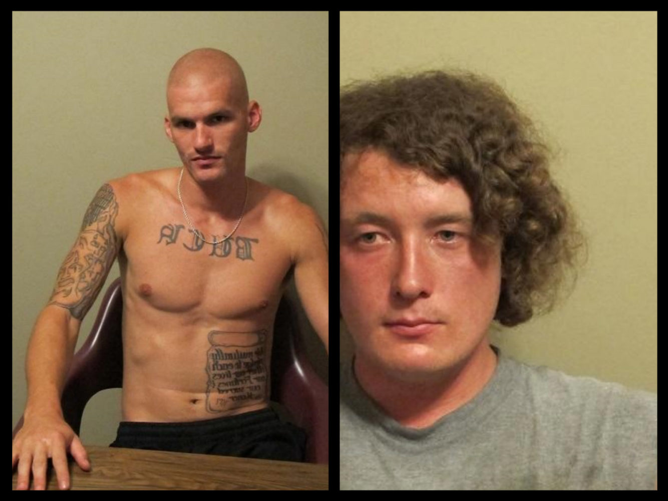 Arrests Made in Livingston County Firearms Theft