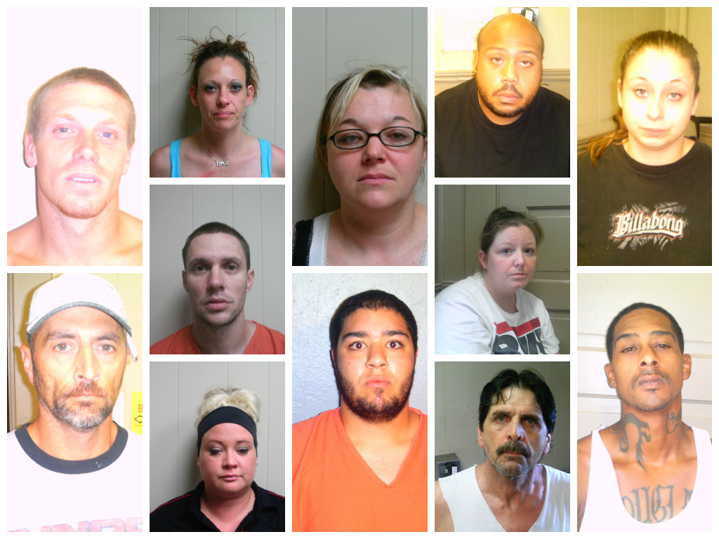 Round-Up Results in Numerous Arrests