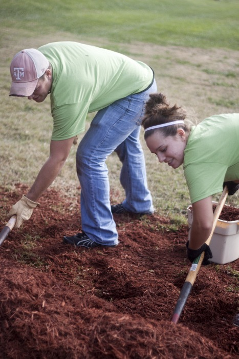 Thousands Volunteer for Day of Service