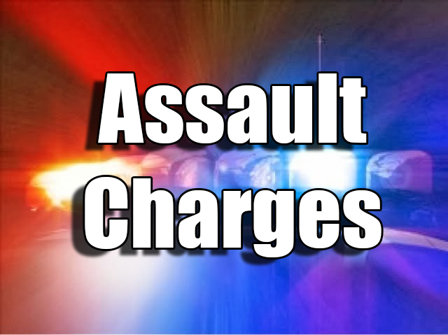 Brunswick man facing two counts of assault after resisting arrest
