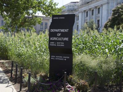 Groups Want USDA Investigated
