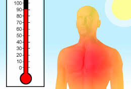 Heat Strokes and Exhaustion: Tips, tricks, and things to remember during hot summer months