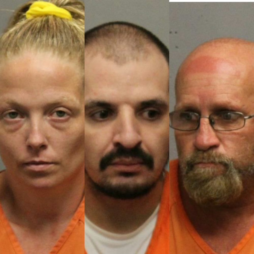 Multiple charges filed in Livingston County meth investigation