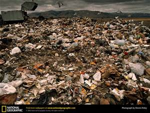 NEW: Study: Twice as much trash put in landfills than estimated