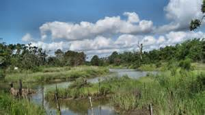 Body found in pond in Nodaway County