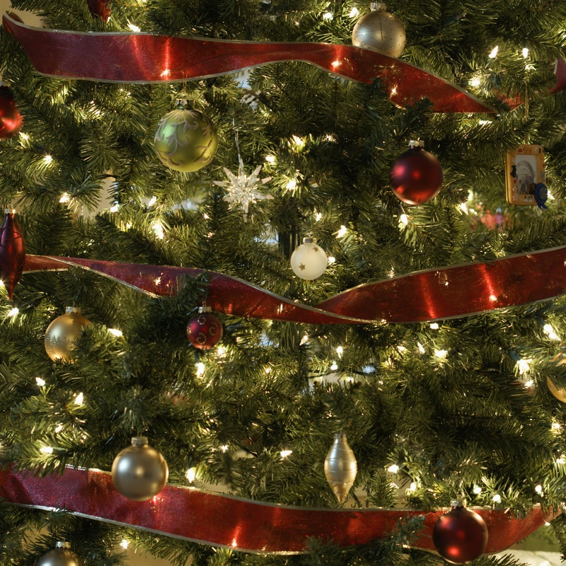 MU professor offers tips to keep trees healthy for the holidays