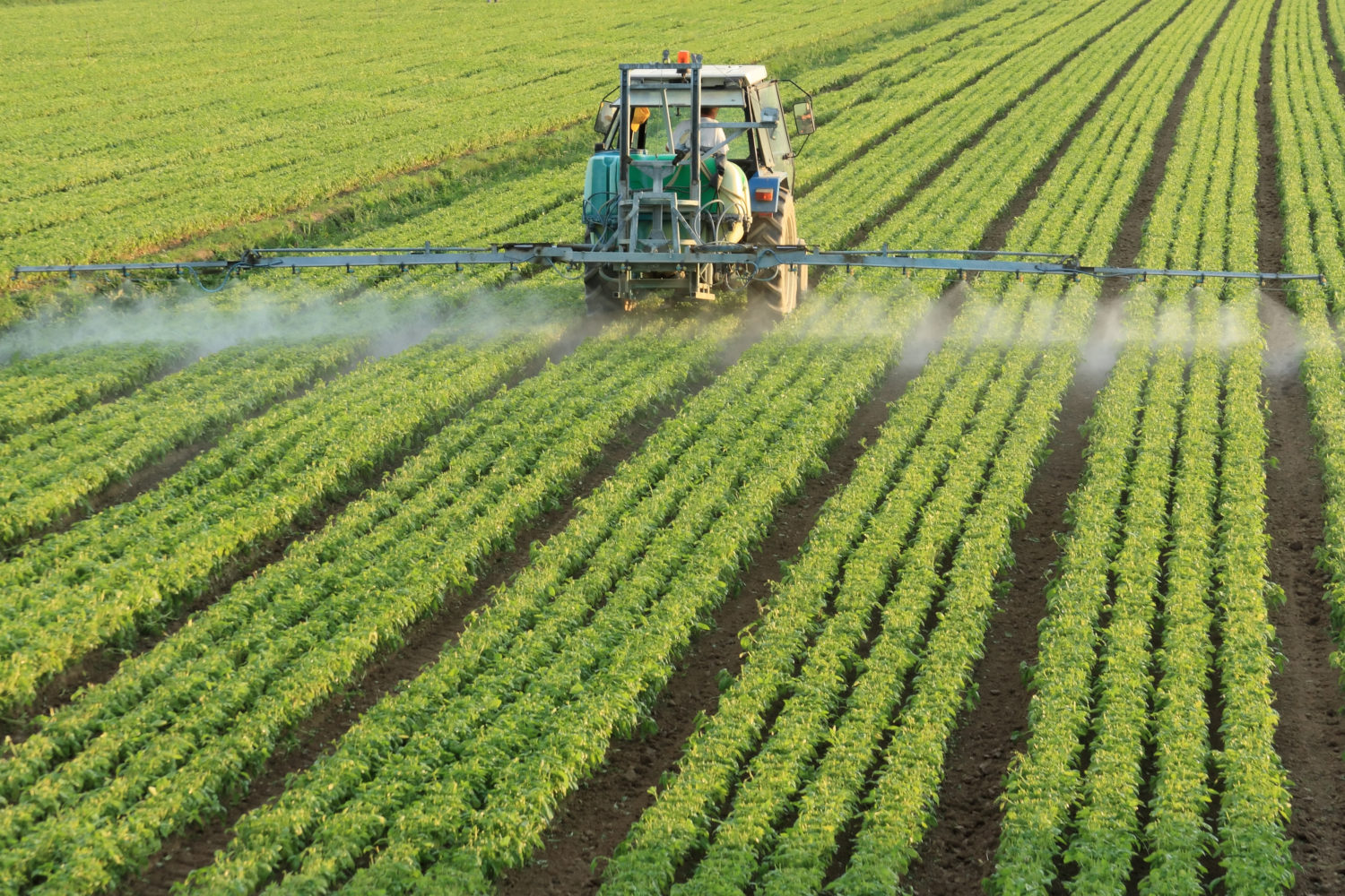 Dicamba weed application cutoff date quickly approaching