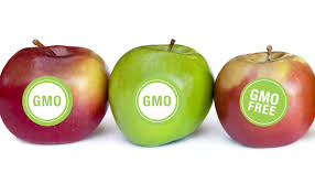 A united call to action on GMO's