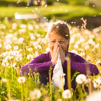 Allergy problems result of Americans' modern society, researchers suggest