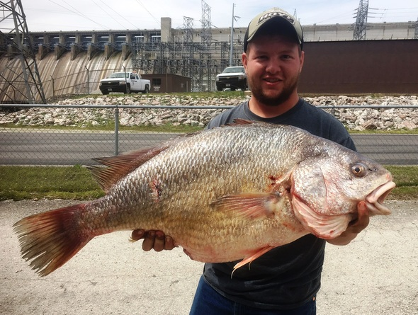 Reeds Spring man catches record breaking freshwater drum
