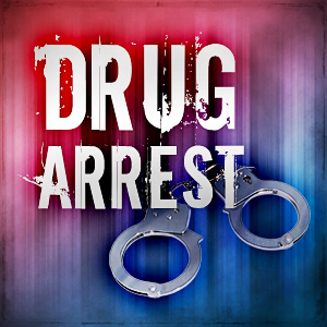 Georgia man held on drug allegation in Boone County.