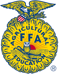 Area FFA chapters participate in 2018 National Convention