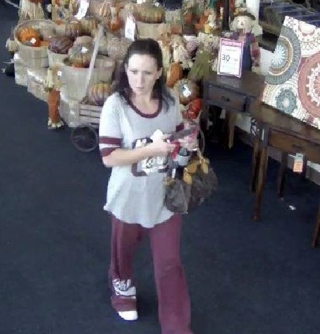 Clay County Detectives ask for public's help identifying stolen credit card suspect