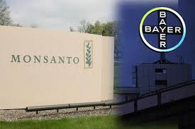 bayer-monsanto-3