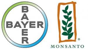 bayer-monsanto-2