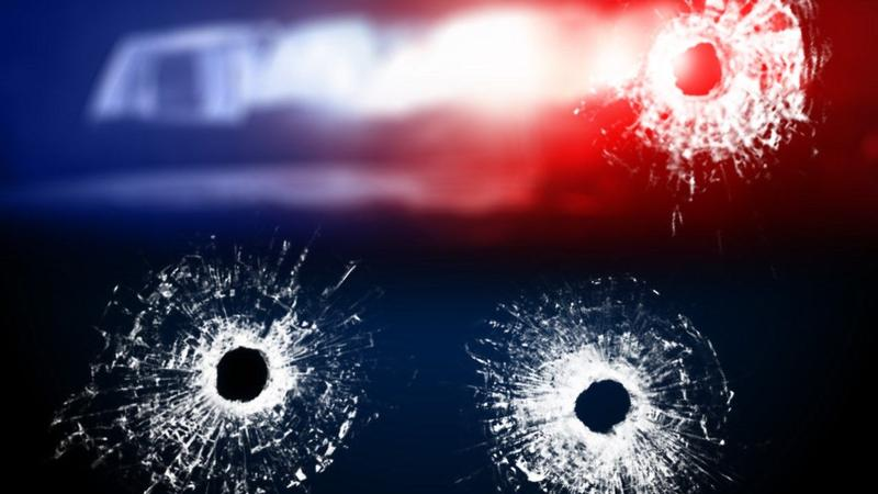 Teen to appear over shots fired at Cass County vehicle