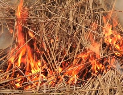 Grass fire burns large swath near Thompson River bridge