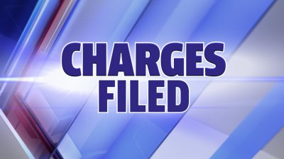 Single felony and multiple misdemeanors charged against Clinton County man