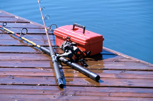 Catching Carp: How to hook an invasive species