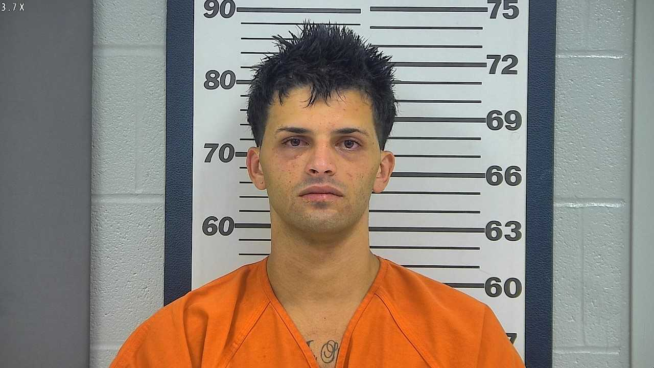 Platte County man faces life in prison on sodomy and domestic assault charges
