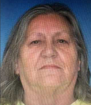 UPDATE: Endangered Silver Advisory subject found safe