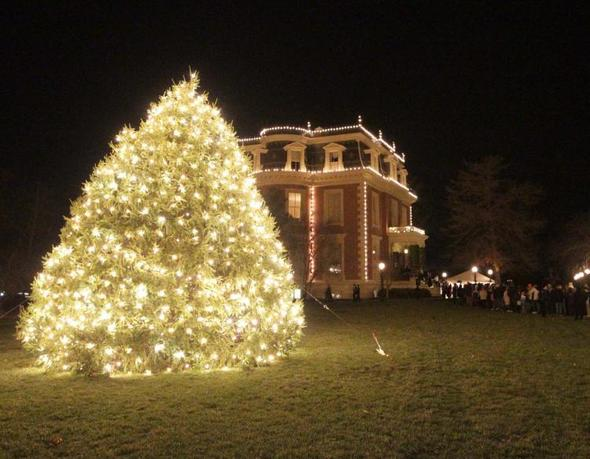 NEWSMAKER — Missouri Department of Conservation on the hunt for Governor's Mansion Christmas tree