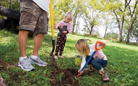 MDC encourages Missourians to celebrate Arbor Days by planting native trees