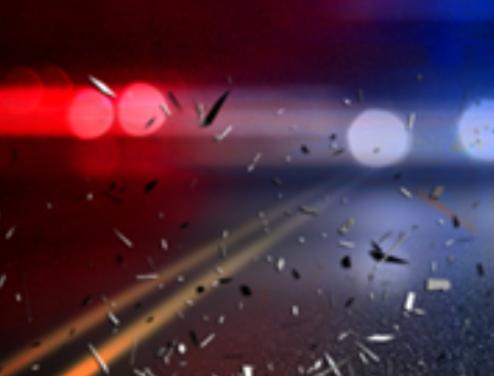 Injury crash precipitated by driver maneuver to avoid animal