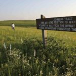 Prairie wildflowers enhance summer hikes in Missouri