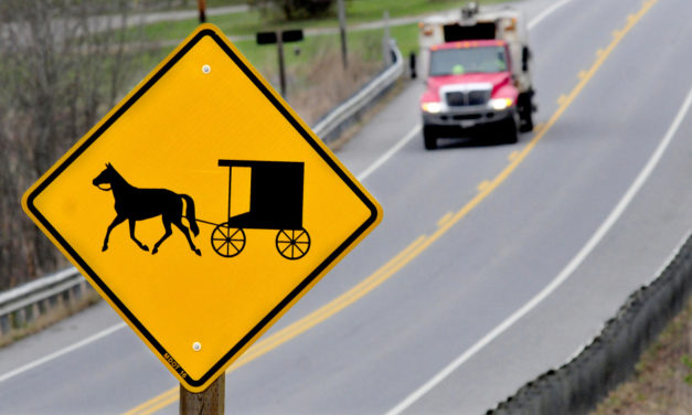 Woman seriously injured in crash involving horse-drawn-vehicle