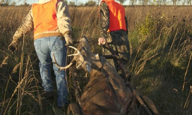 New regulations proposed by MDC to combat spread of CWD