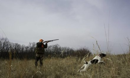 MDC hosts Wingshooting for the Hunter workshop in Kirksville