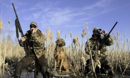 Changes to the 2019 waterfowl managed hunts announced by MDC