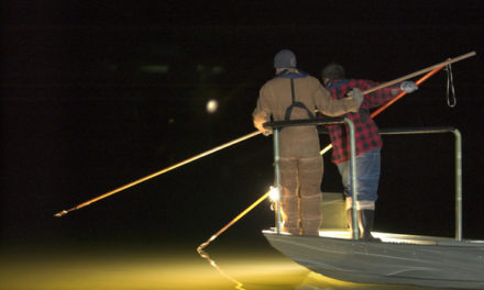 Fall gigging season for fish extended by MDC