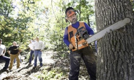 MDC to offer chainsaw safety training for landowners in Sedalia