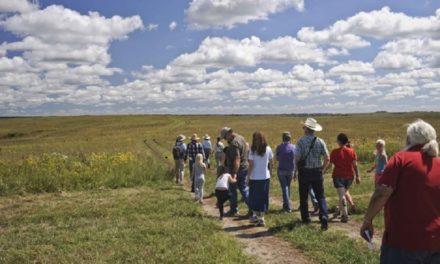 Dunn Ranch Prairie to host free MDC Prairie Day event