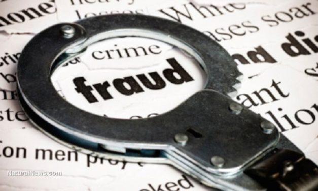 Liberty woman charged with defrauding food stamp and healthcare benefits