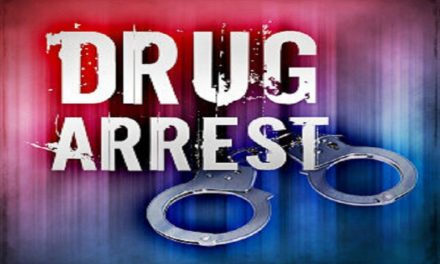 Georgia man facing drug trafficking in Cooper County