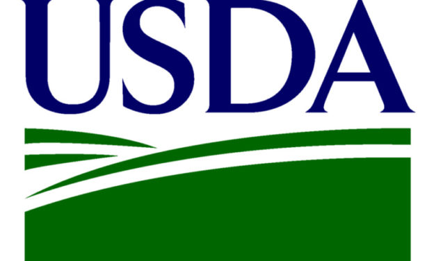 USDA seeks public comment on new Ethanol Sales Infrastructure Incentive Program