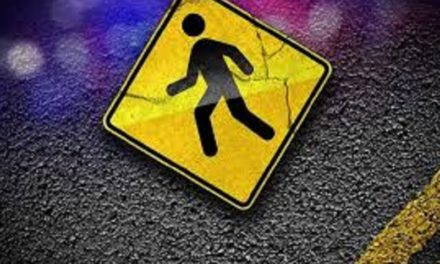 Train kills pedestrian at track intersection west of Springfield