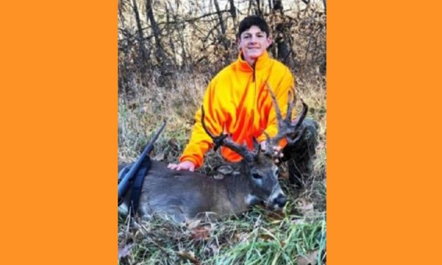 Rare doe with 19 point antler rack shot in northern Missouri