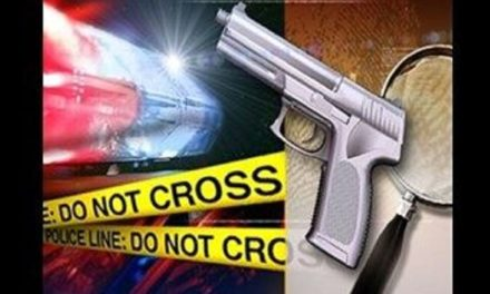 Officers respond to Tipton shooting overnight