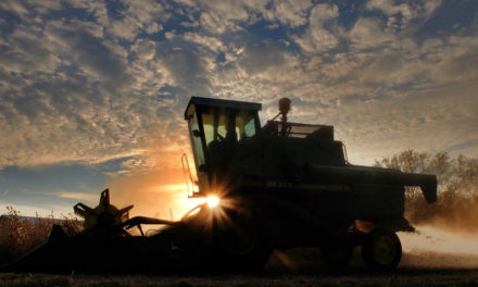 Missouri Soybean Association looks forward to USMCA being finalized
