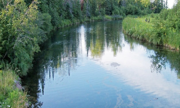 Ag Retailers Association says new Navigable Waters Protection Rule provides clarity