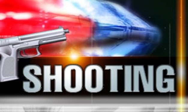 Two youth shot in Columbia