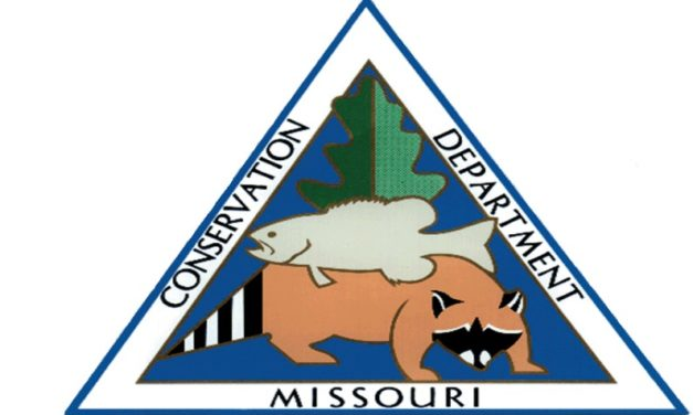 MDC extends closures and trout-tag waiver due to COVID-19