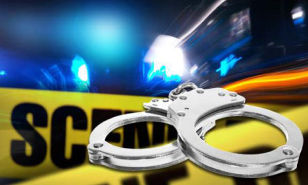 Driver caught in Macon County in car reported stolen